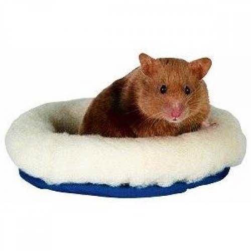Hamster Bed For Sale