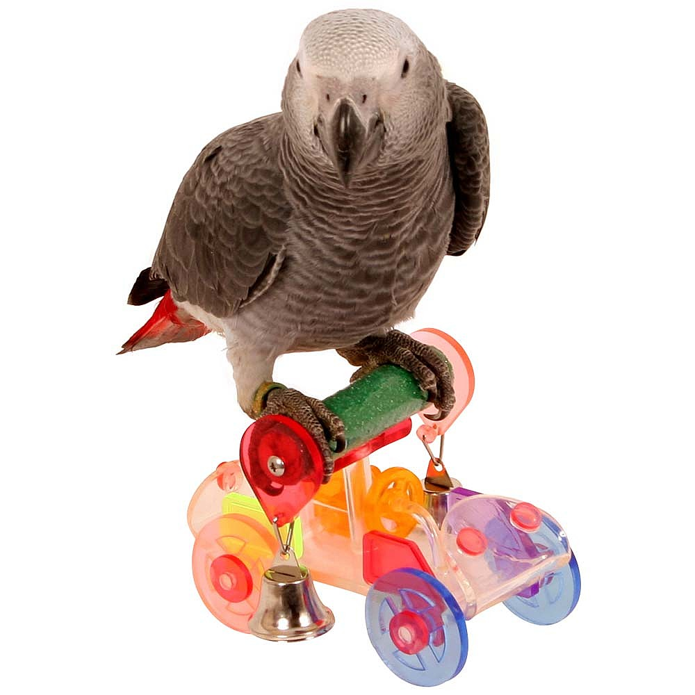 Bird Toy Outlet : Toy parrots wow