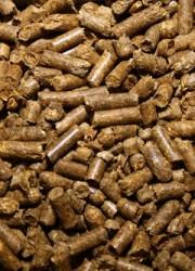 herbi-floor-tortoise-bedding-bulk-sack-52l-7801-p
