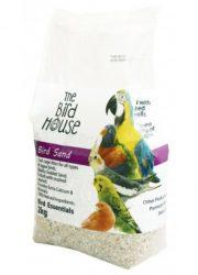 happy pet bird sand